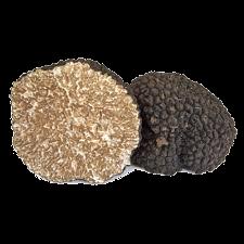 Image of truffle scorzone