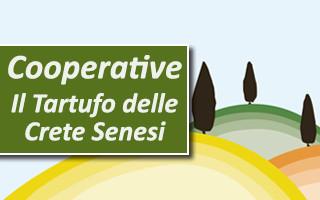 cooperative il tartufo delle crete senesi